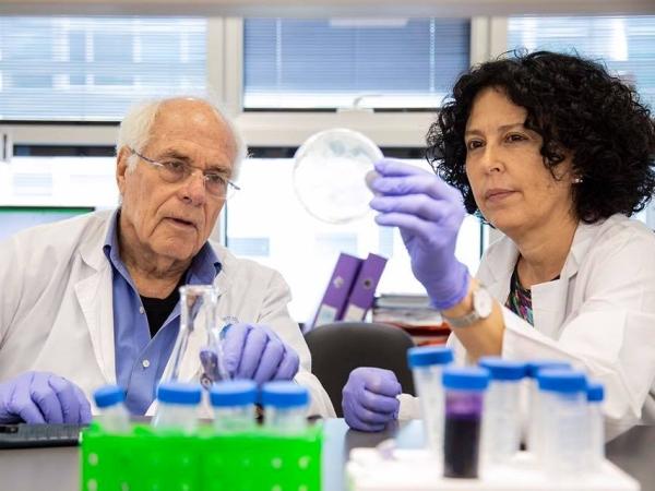 Лечение клетками CAR-T в Израиле